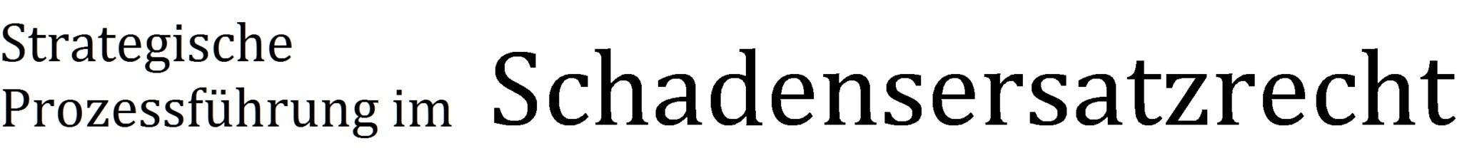 Strategische Prozessführung im Schadensersatzrecht Logo